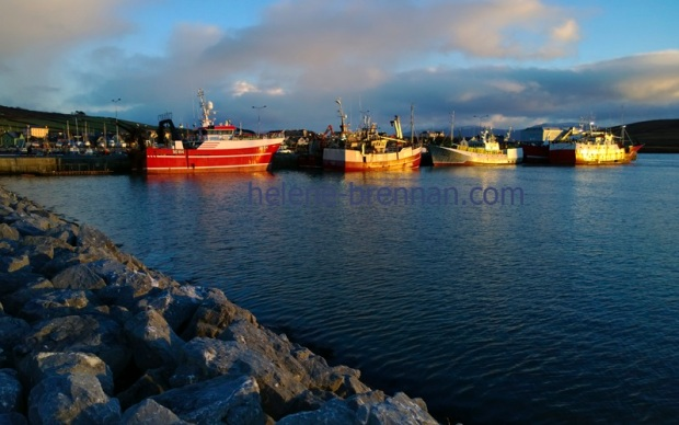 The setting sun reflects on the fishing boats in Dingle harbor