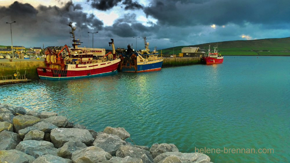 FISHING BOATS IN DINGLE HARBOUR