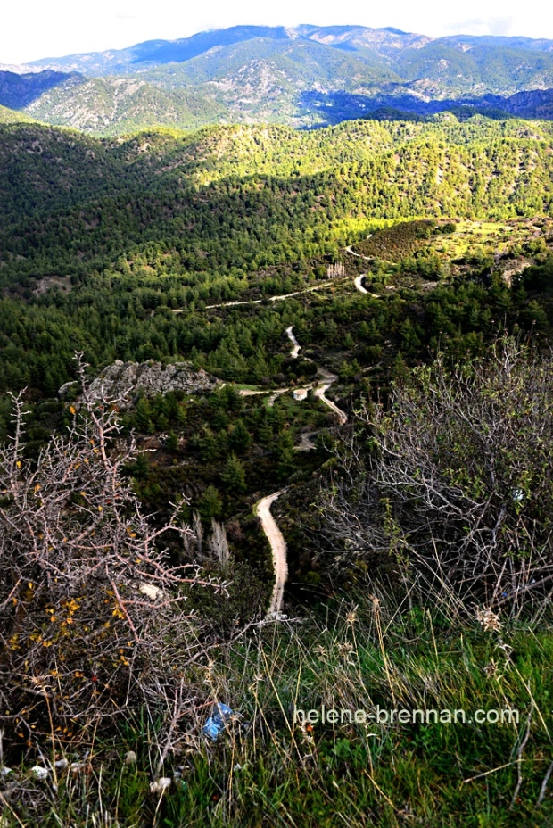 troodos landscape 2 cyprus