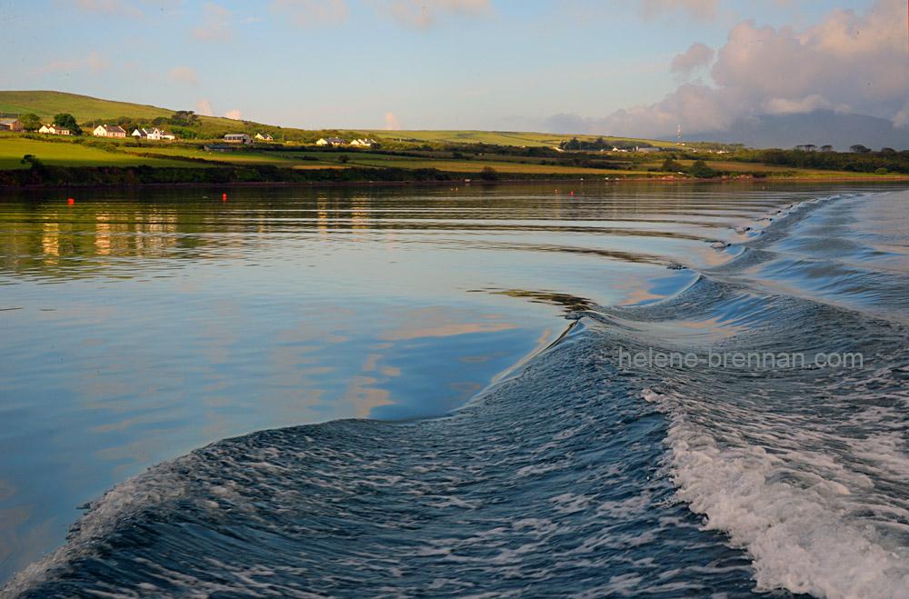 DSC_8386 dingle harbour