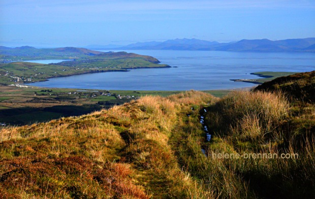 DSC_0141 dingle bay iveragh from mt eagle