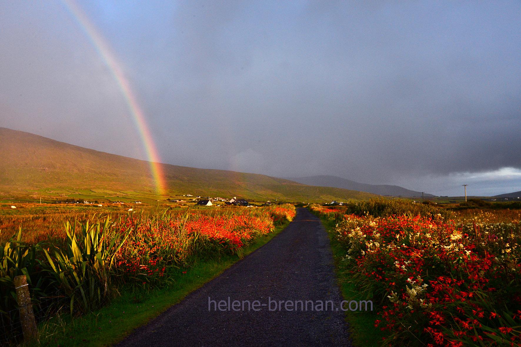 DSC_1570 rainbow at cuas