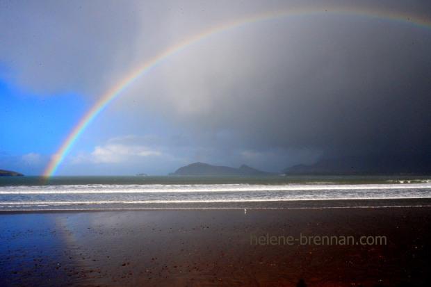 DSC_1609 rainbow