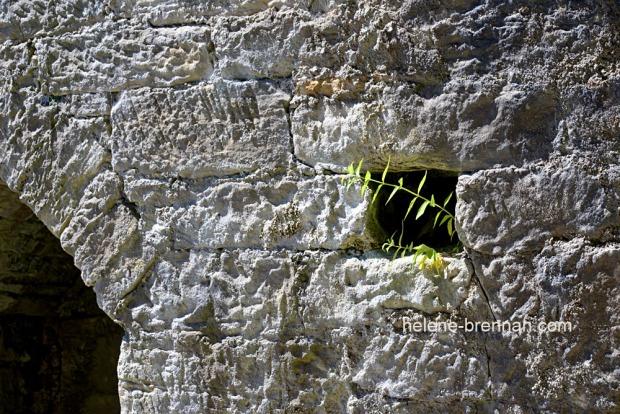 DSC_8855 lime kilns detail