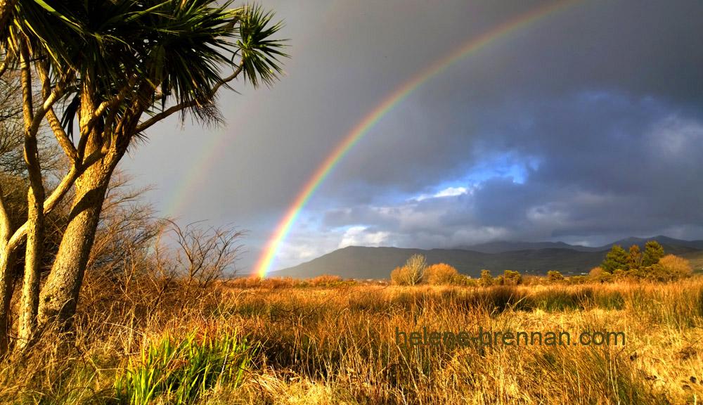 rainbow emlagh east 5