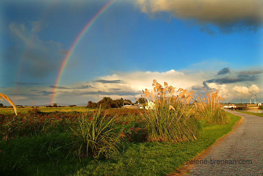 Tralee Rainbow 2 2