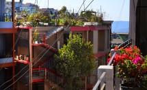 DSC_0798 roof gardens