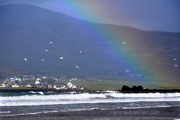 DSC_2177 beal ban rainbow