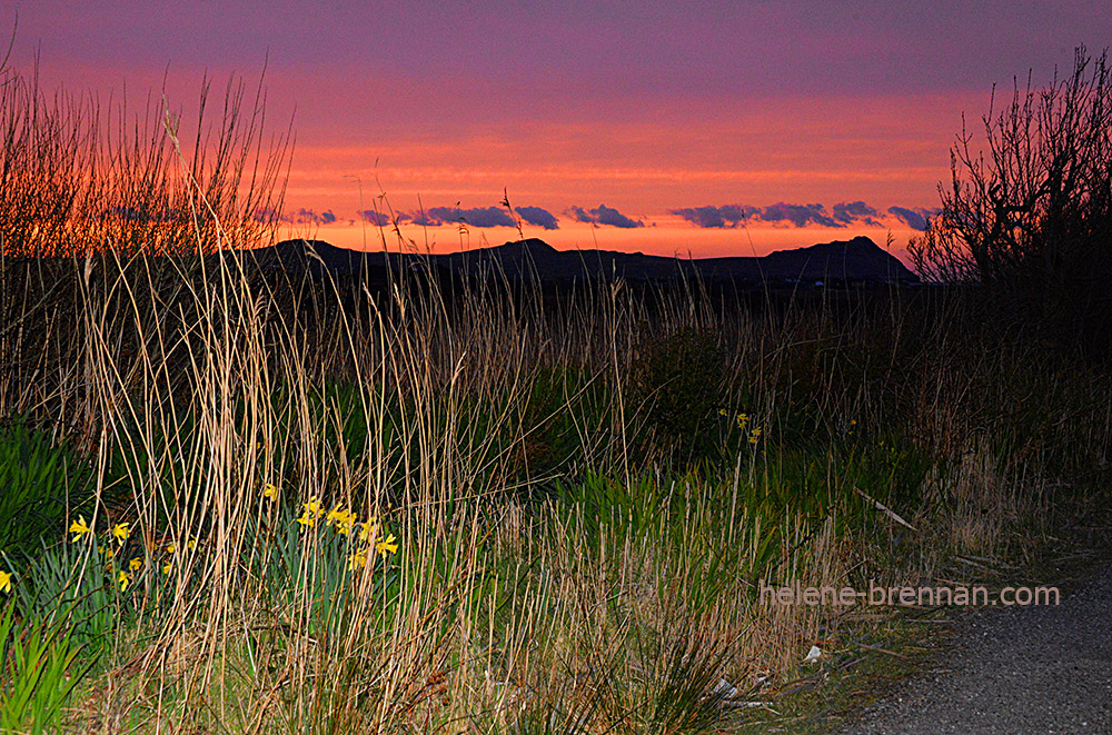 DSC_2313 ballyferriter sunset 2