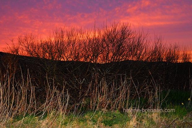 DSC_2318 ballyferriter sunset 2