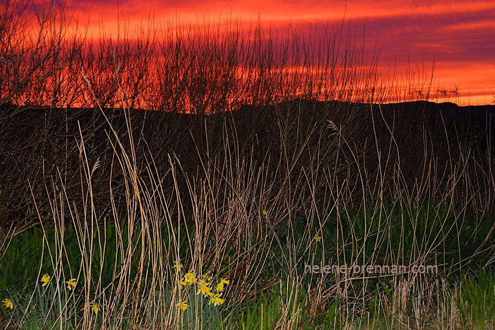 DSC_2338 ballyferriter sunset