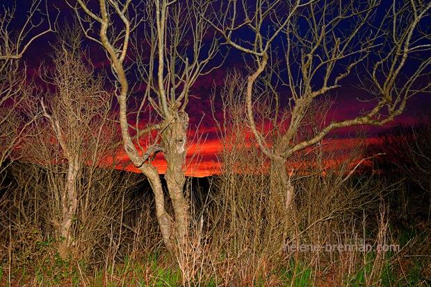 DSC_2345 ballyferriter sunset