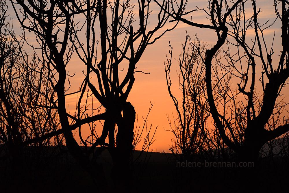 DSC_2553 emlagh sunset