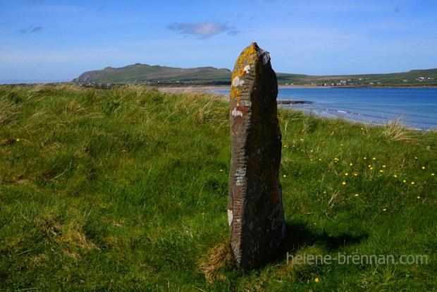 DSC_3325 ballinrannig ogham stone