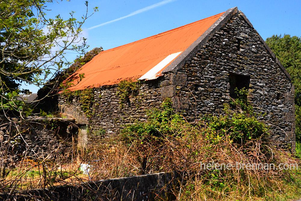 DSC_3335 shed