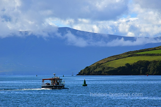 Dingle Bay_4634
