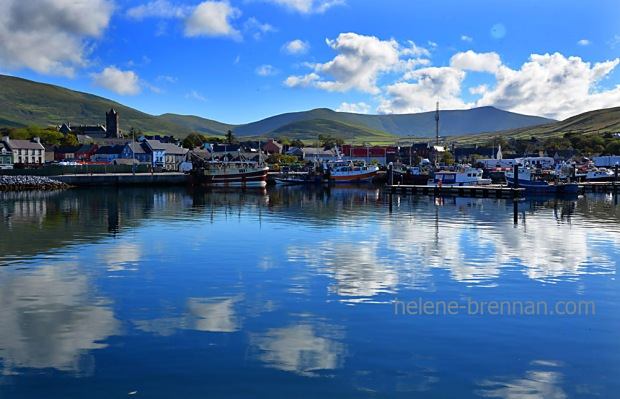 Dingle Harbour_4554