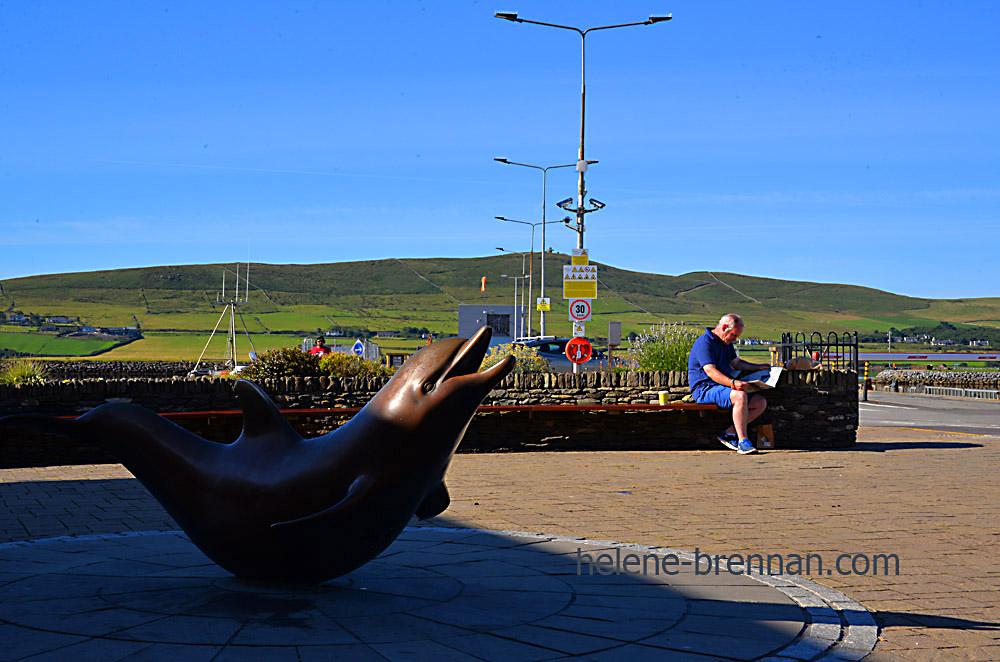 Dingle Harbour_4560