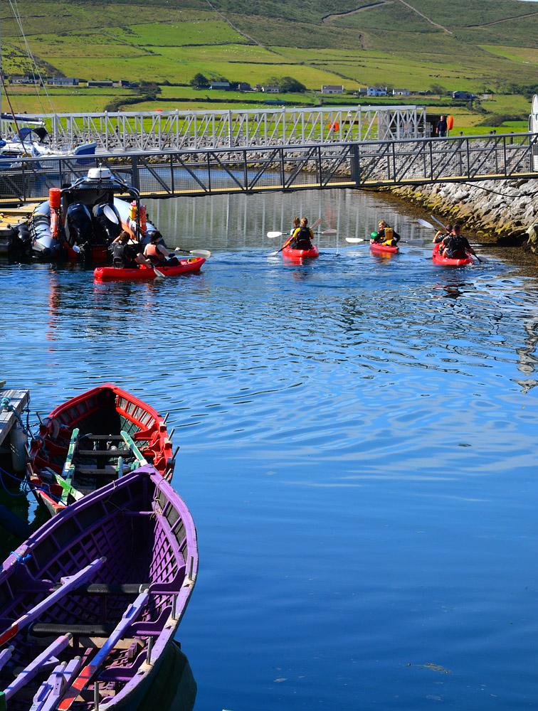 Dingle Marina rowing boats 4639