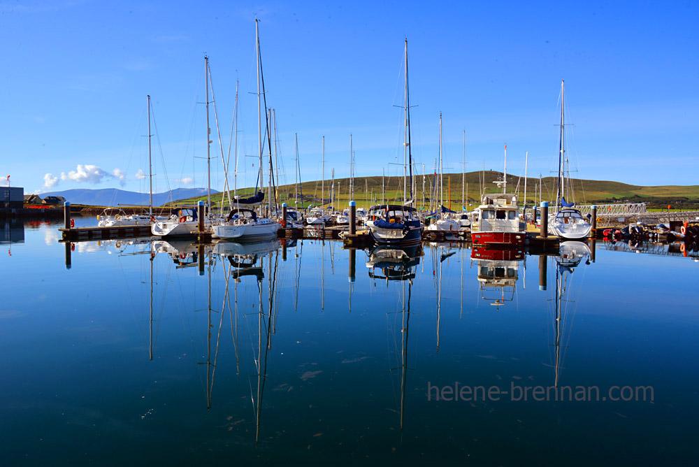 Dingle Marina_4516