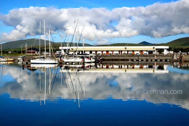Dingle Marina_4525