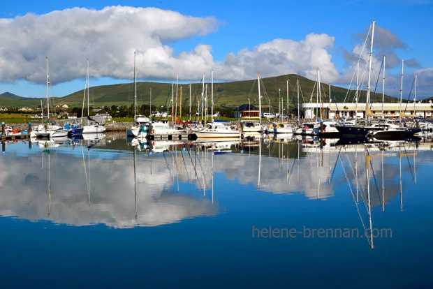 Dingle Marina_4549