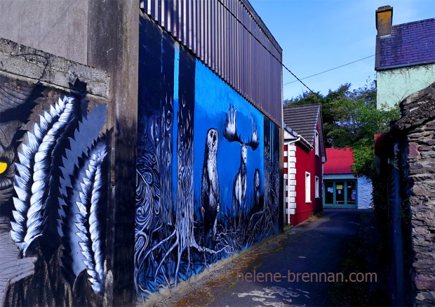 Dingle Town_091450