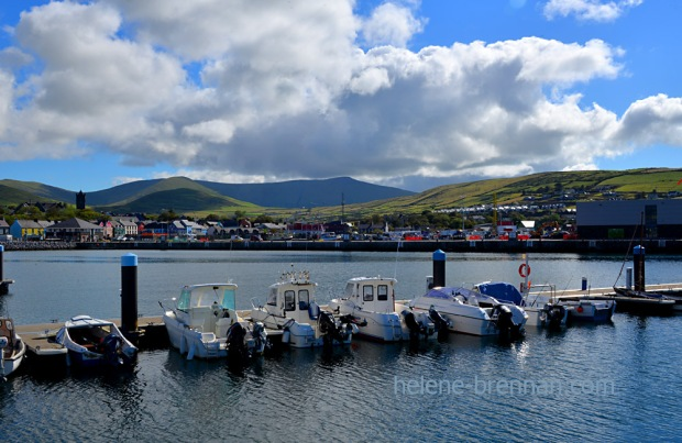 Dingle Town_4619