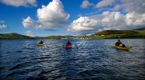 WP_20161015_15_39_08_Rowing in Dingle Harbour 2
