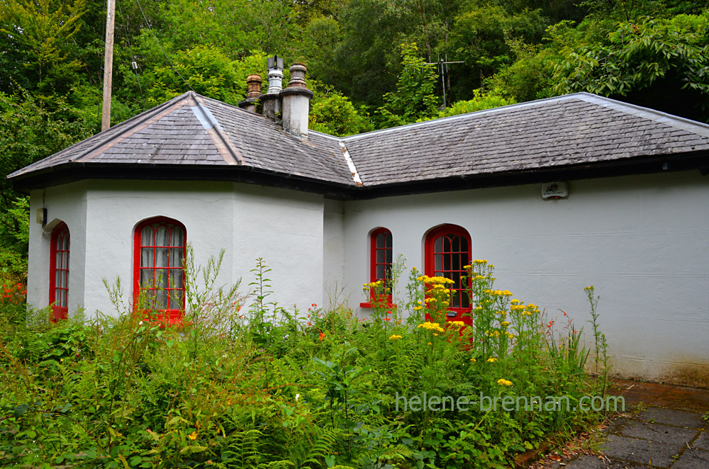 cottage in killarney_4882
