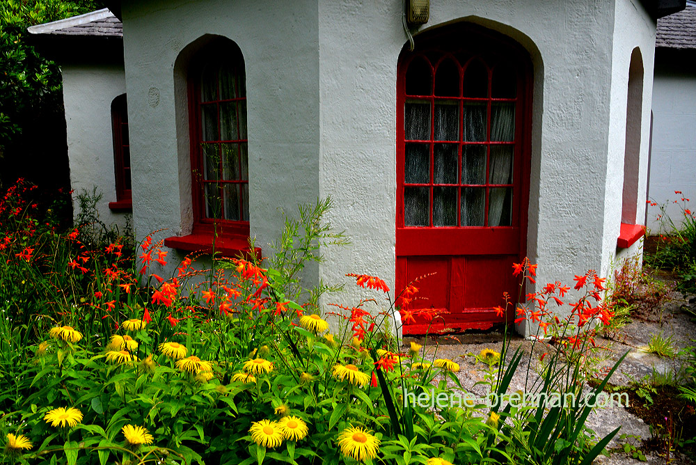 killarney cottage garden_4914