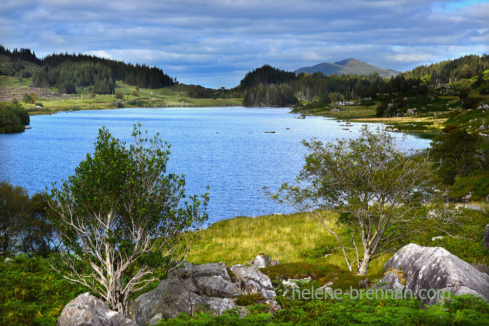 Lake in Killarney National Park_4960