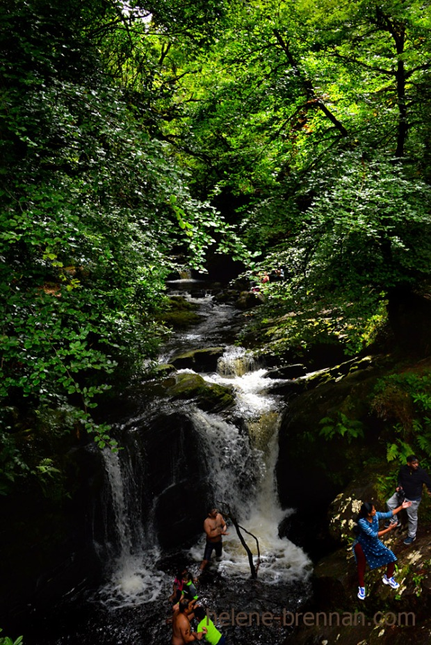 torc waterfall_4829